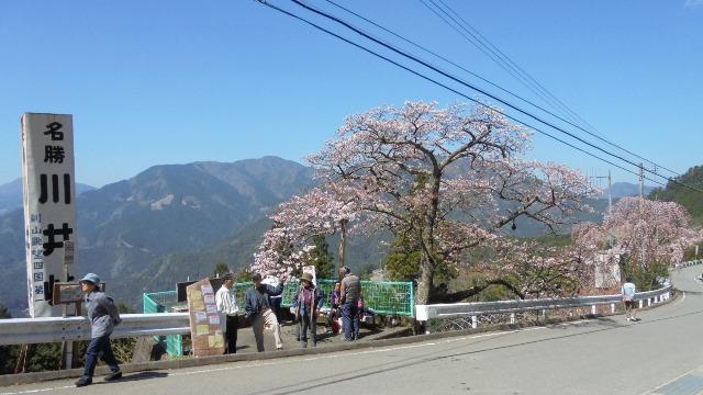 川井峠4.jpg