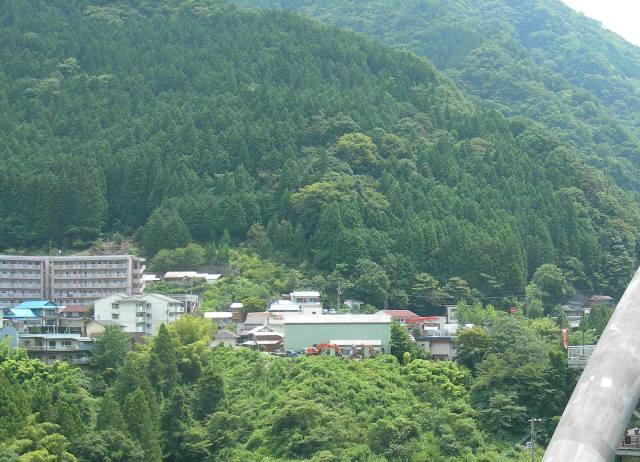 祖谷ふれあい公園9.jpg
